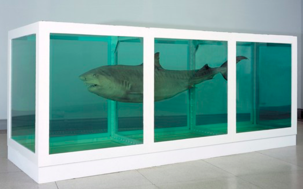 Figure 5. Damien Hirst,The Physical Impossibility of Death in the Mind of Someone Living,1991.