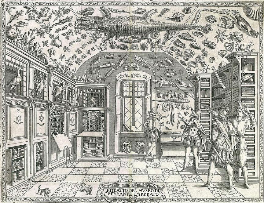 Figure 2. Ferrante Imperato's Museum in Naples. Engraving from Ferrante Imperato,Dell'Historia Naturale, Naples 1599.