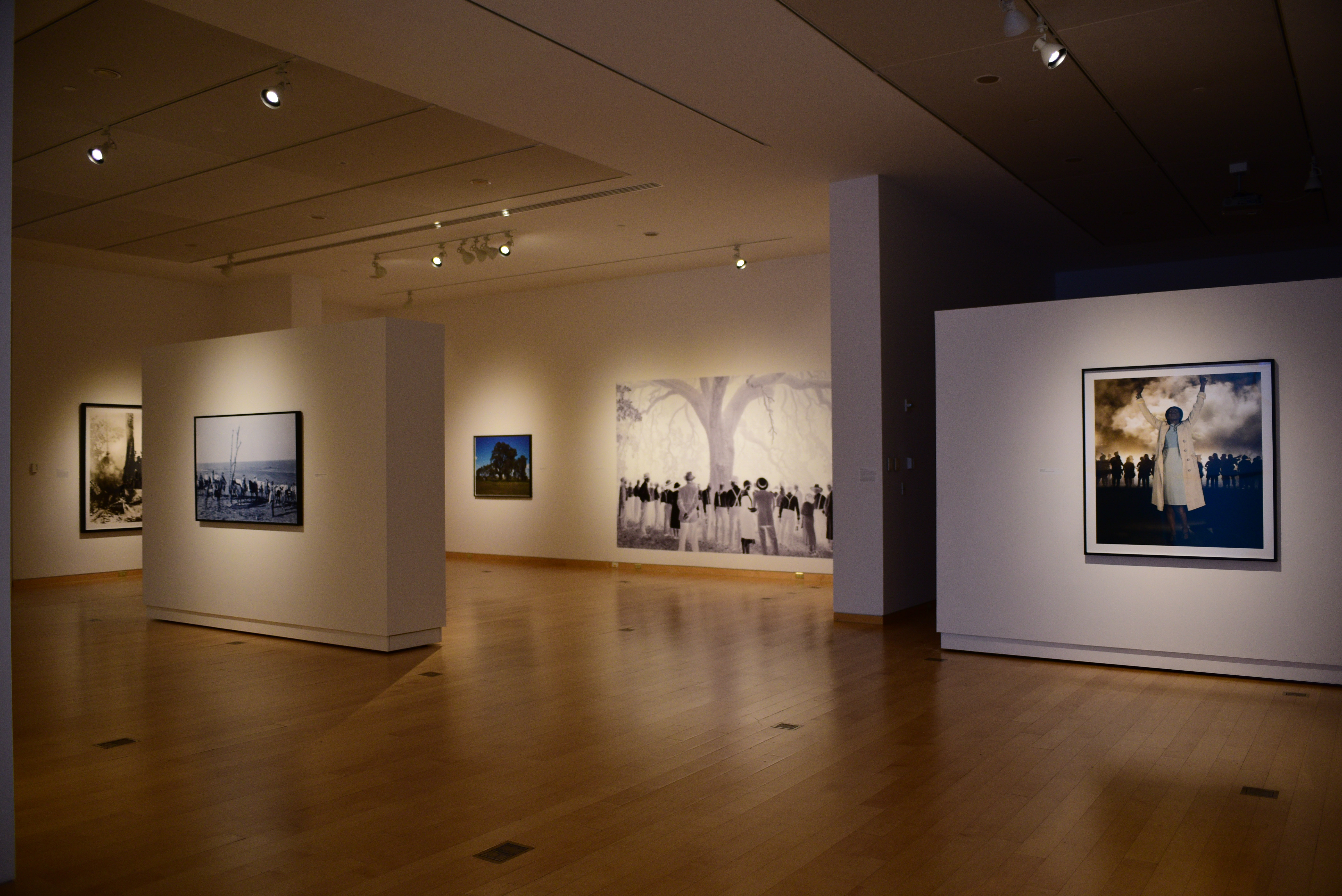 Figure 1.Gallery installation photo ofKen Gonzales-Day:Shadowlandsexhibition, DePauw University(Fall 2017).Photo credit: manuscript authors.