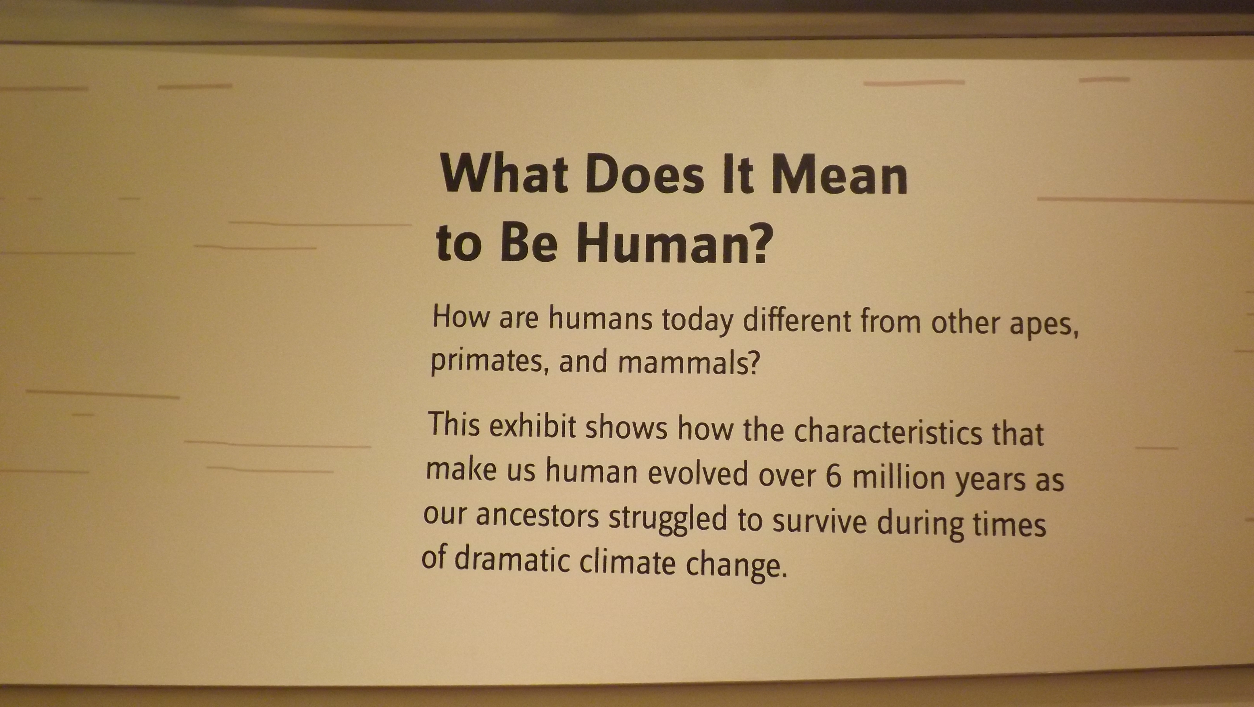 Figure 1. The Smithsonian Institution's Museum of Natural History wall label. 2014.